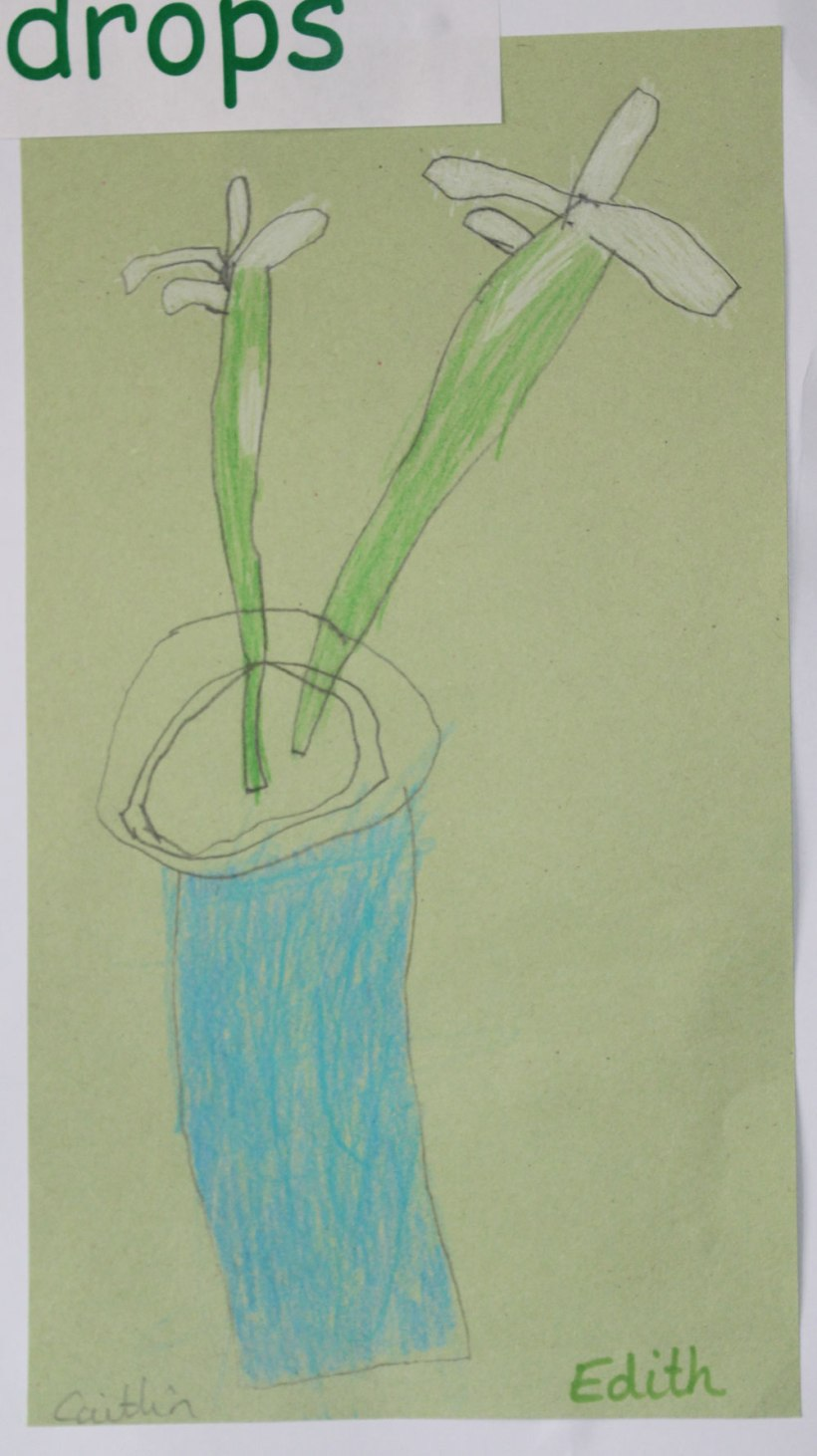 Year-1-spring-art2