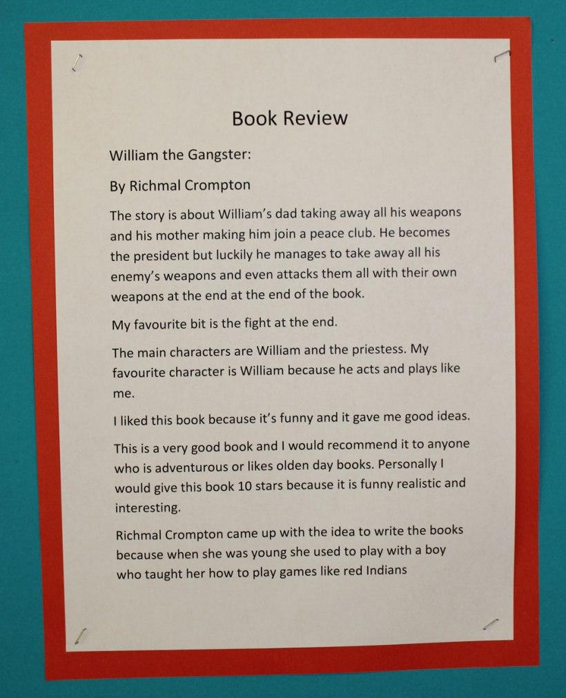 Year-5-Book-Reviews3