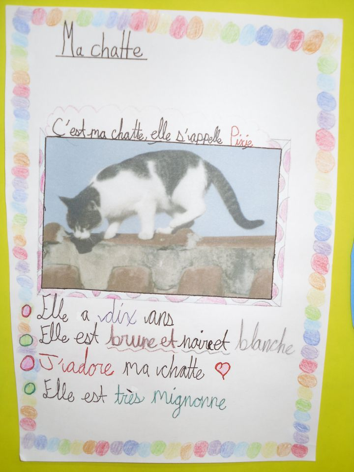 Year 7 French pets2