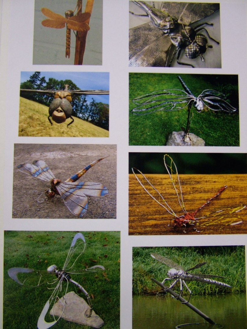 Year-8-insects10