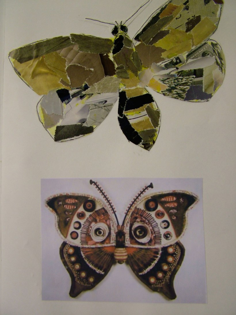 Year-8-insects12