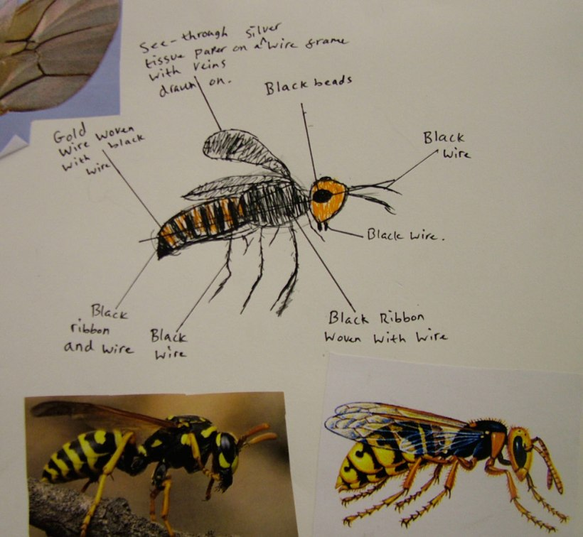 Year-8-insects6