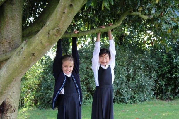 Pupils-in-tree