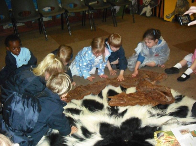 Nursery-Reception-Zoo12