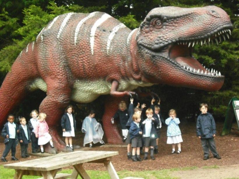 Nursery-Reception-Zoo17