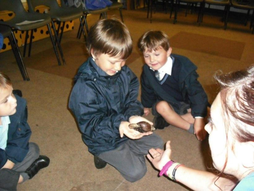 Nursery-Reception-Zoo2