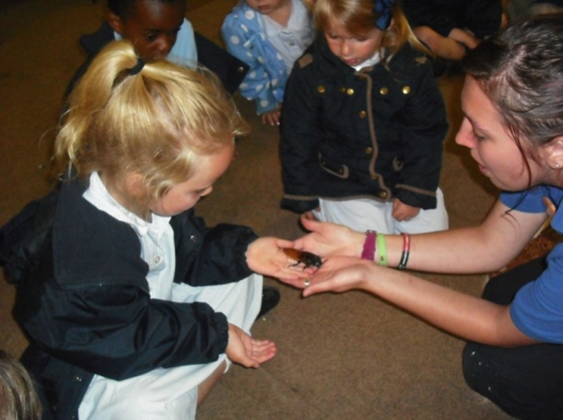 Nursery-Reception-Zoo8