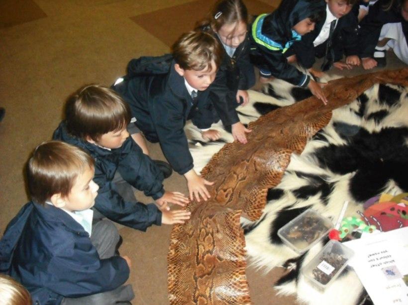 Nursery-Reception-Zoo9