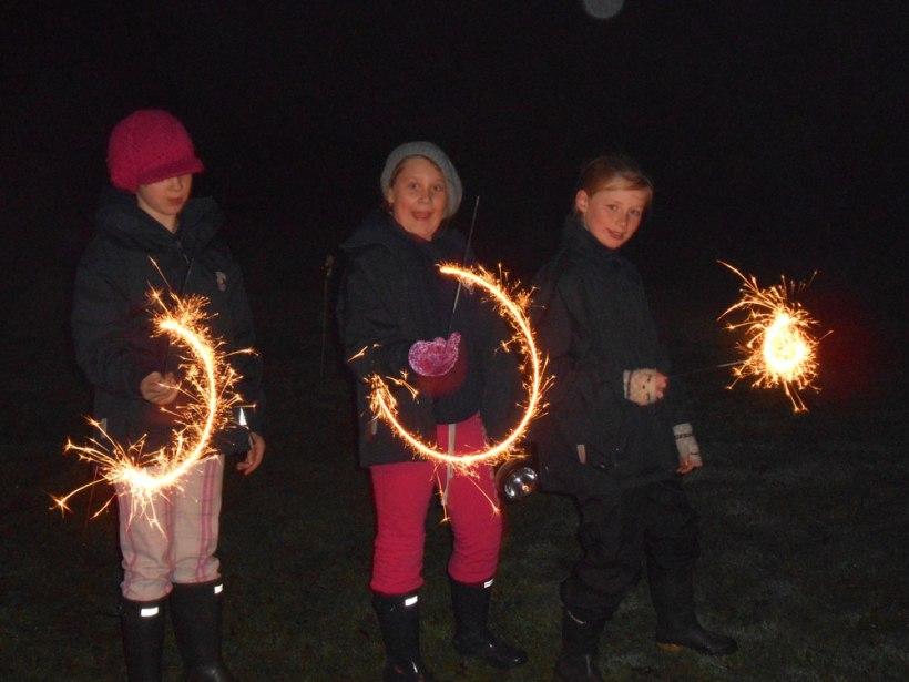 Boarders-fireworks