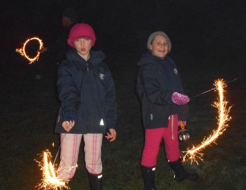 Boarders-fireworks2