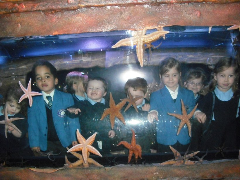 Sealife-Centre-trip19
