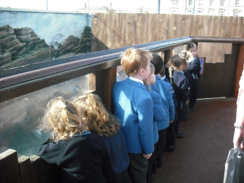 Sealife-Centre-trip4