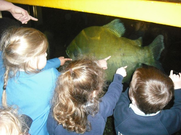 Sealife-Centre-trip6