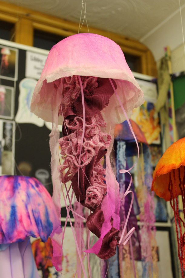 Year-11-jellyfish