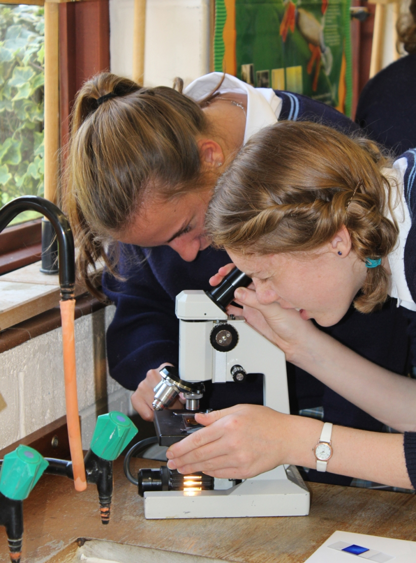 Year11Science