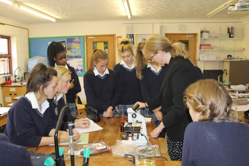 Year11Science7