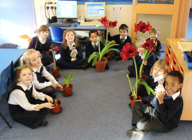 Year1_2-science-flowers