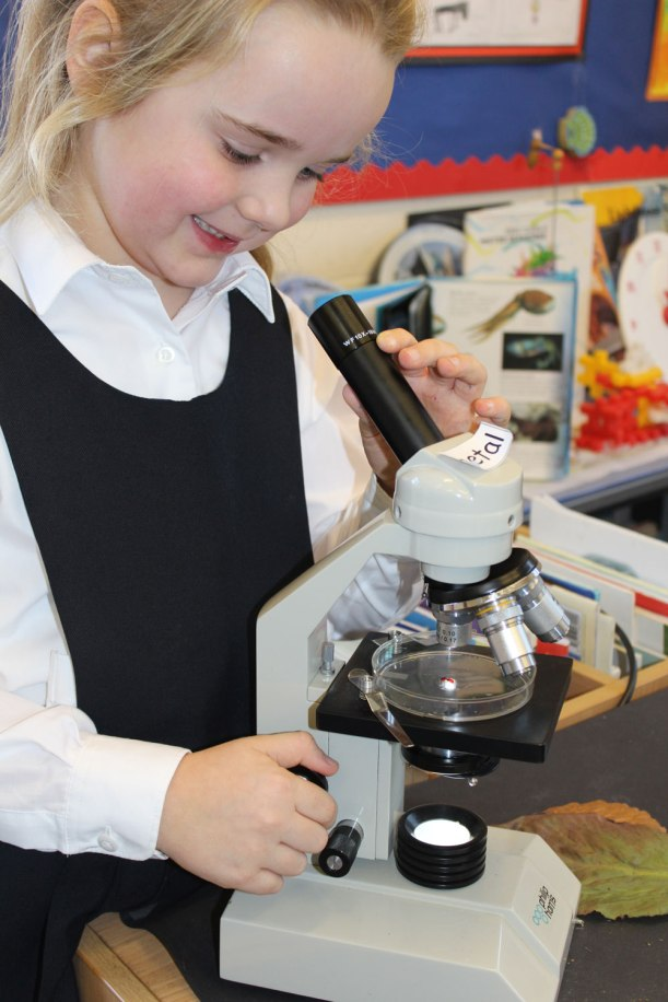 Year-1-and-2-science2