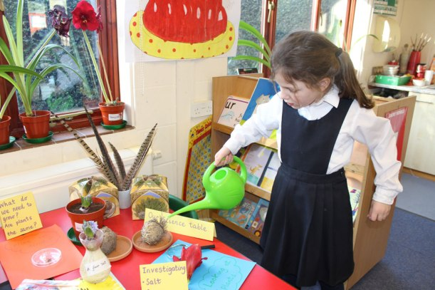 Year-1-and-2-science3