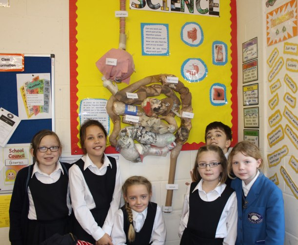 Year-4-science3