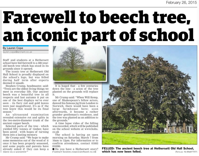 tree-in-news