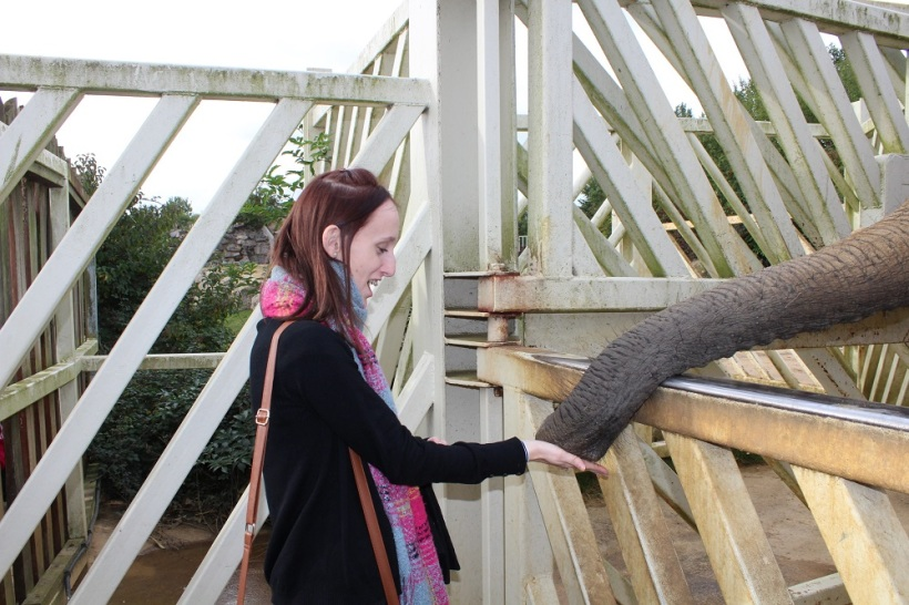 shannon and elephant
