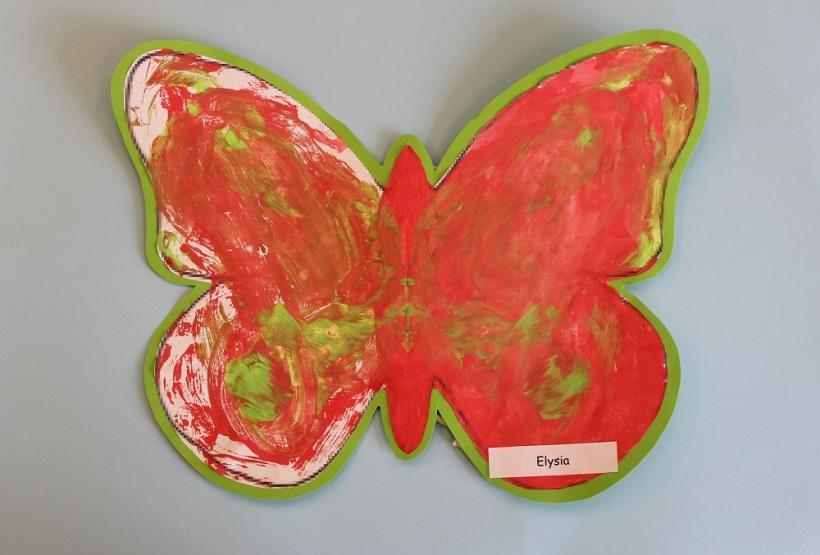 Butterfly 13