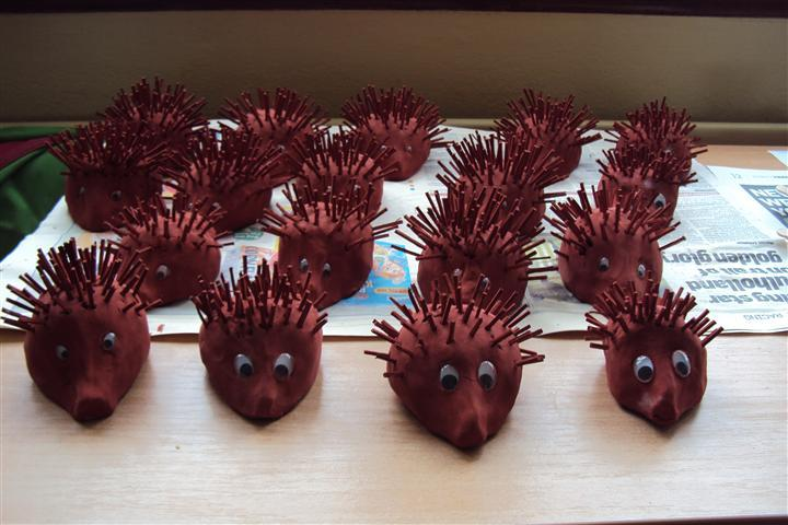 year-1-hedgehogs