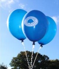 balloonsonly